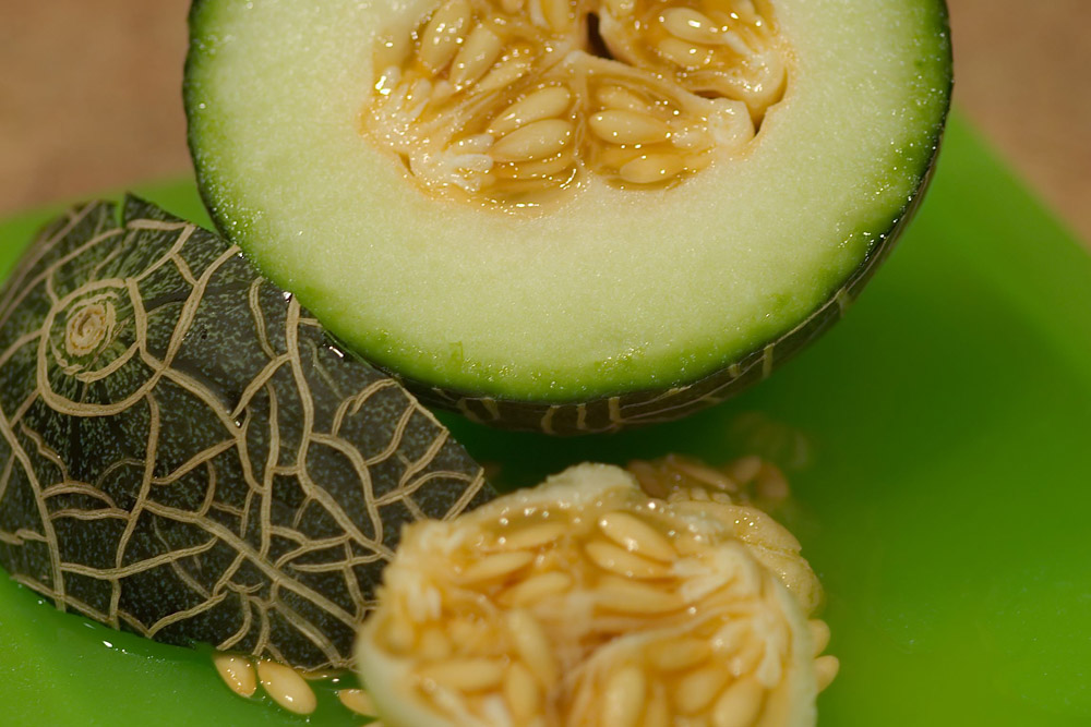 pineapple melon