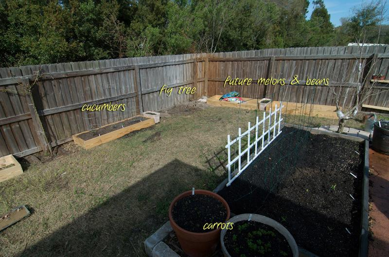 new planting areas