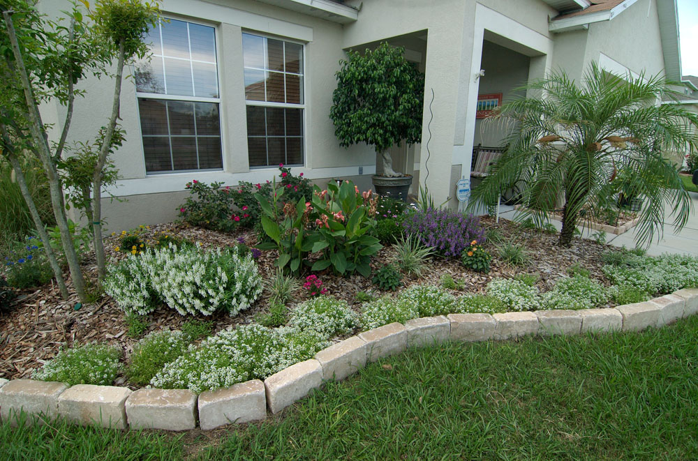 front plantings