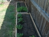 new planting boxes